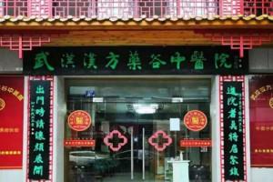 汉方药谷 中医传承发展创新的领航者